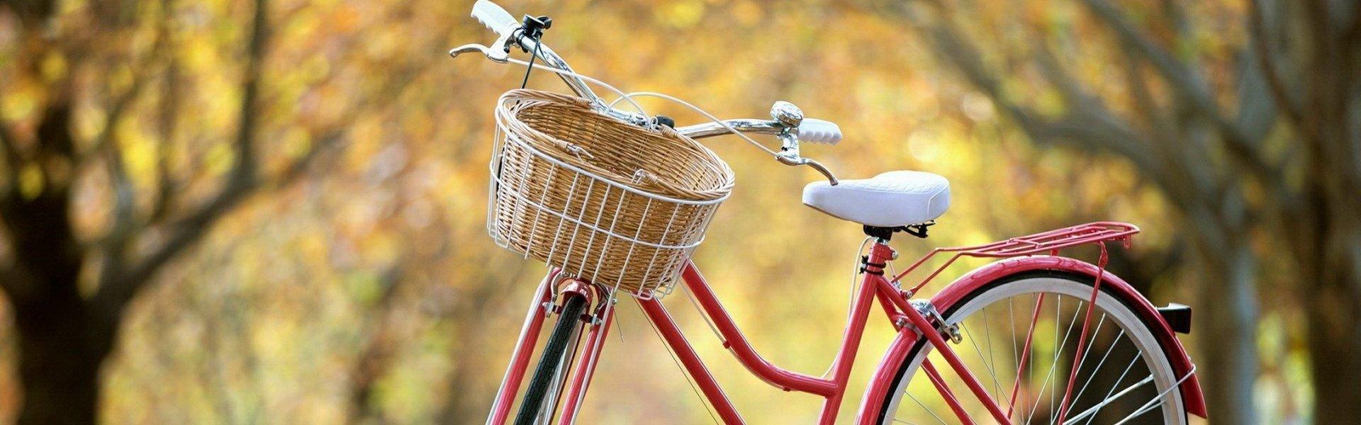 自行車租借服務