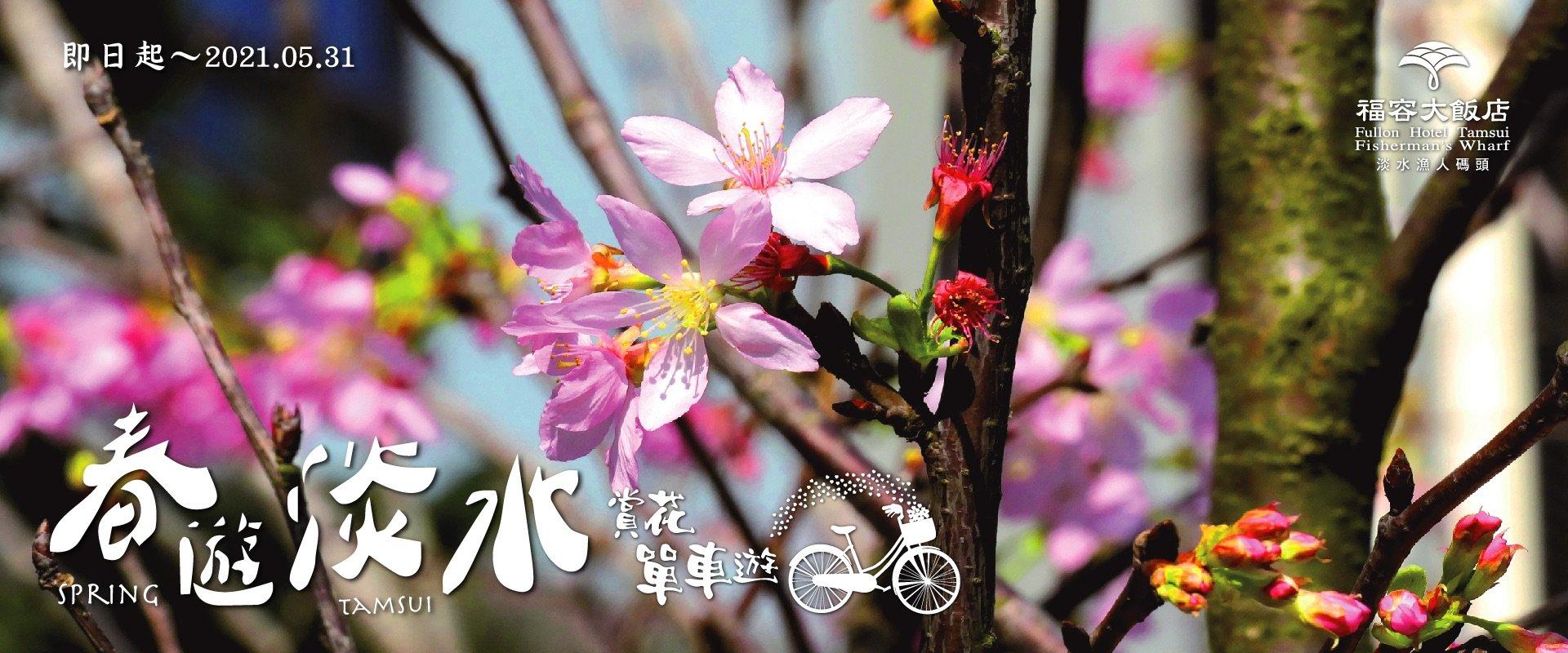春遊淡水新花漾