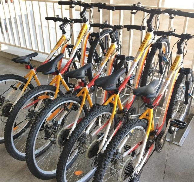 Bicycle rental service