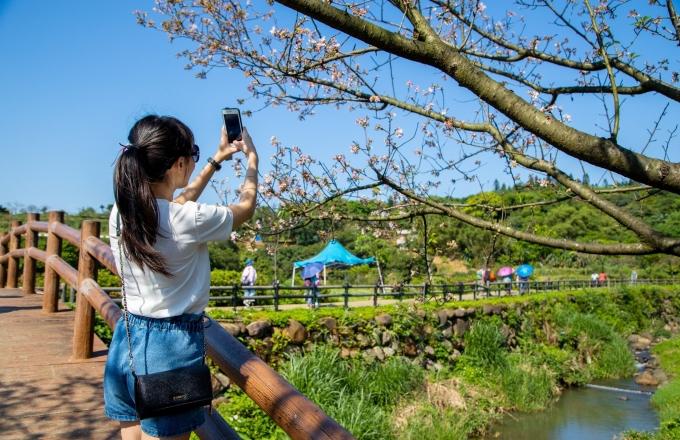 春遊淡水-花漾悠閒假期【雙人住宿含下午茶專案】